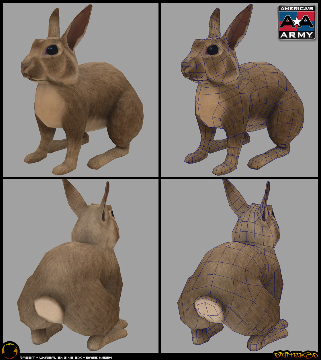 NBC | Rabbit Texture