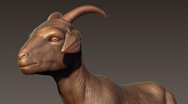 Socom | Goat Body Zbrush