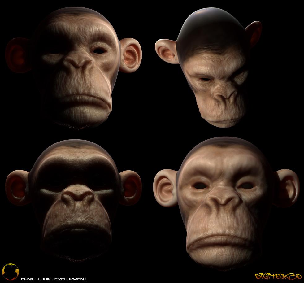 Monkey | Look R&D