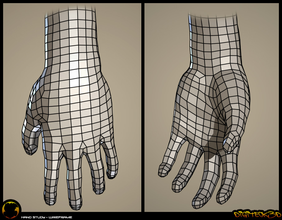 Hand Study | Wireframe
